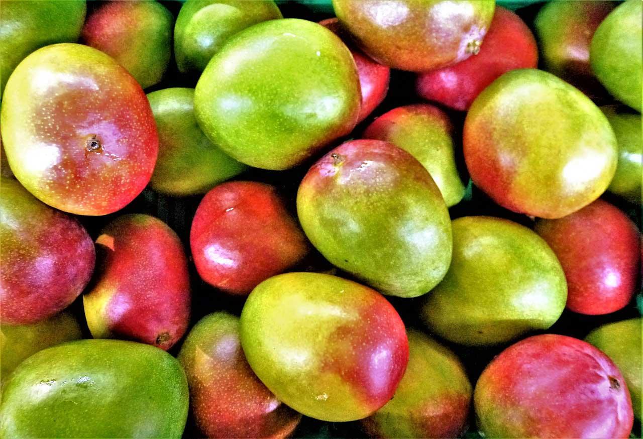 Masło z mango - właściwości pielęgnacyjne